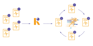 Morph-Reactor-3